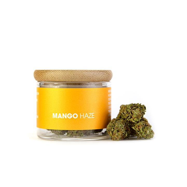 prodotto Mango Haze 1gr