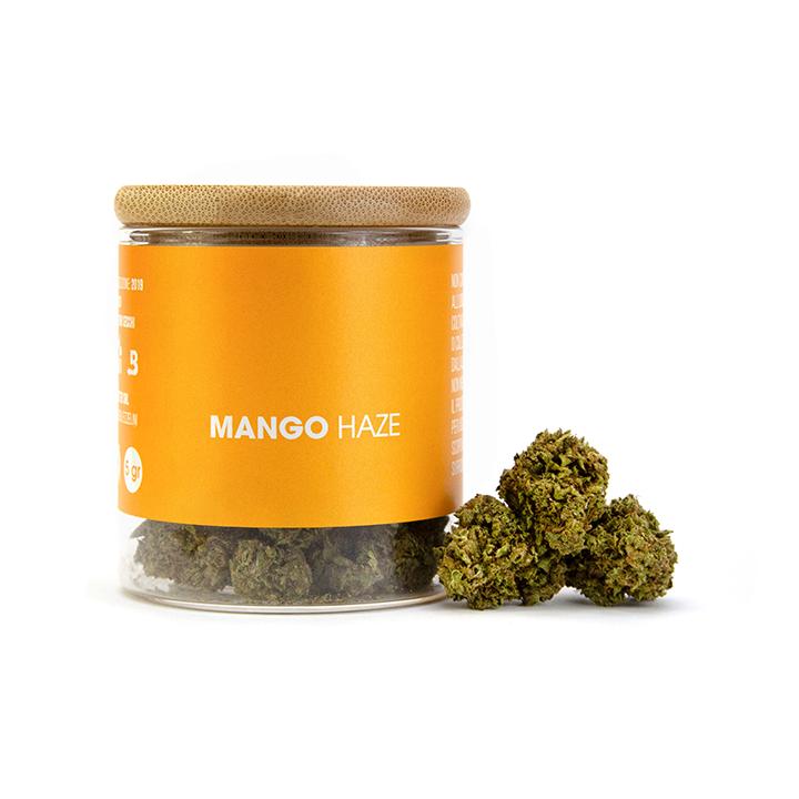 Prodotto Mango Haze 5gr